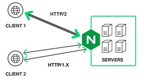 5 Tips to Increase Node.js Application Performance - DZone Performance   Sys&DBA   Scoop.it