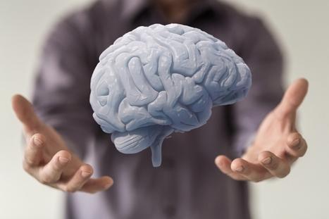 Notre cerveau est-il moins extraordinaire que nous le croyons ? | Health care industry | Scoop.it