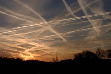 Chemtrails Are Troubling: Whistleblower Contacts IAHF With Inside Info On Chemtrails: How To Detox & Protect Ourselves | Chemtrails Danger ! | Scoop.it