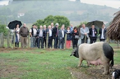 Le terroir basque reconnu | Charcuterie Boucherie | Scoop.it
