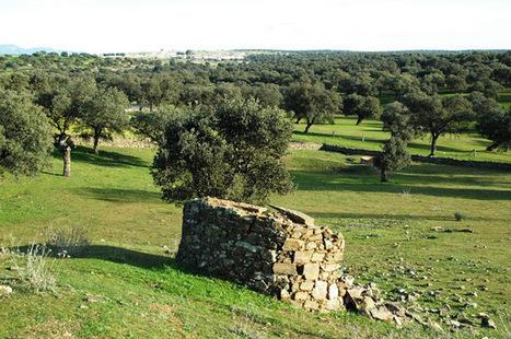 Choza II Hoya de La Condesa (Torrecampo). | Blogs de naturaleza | Scoop.it
