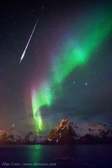 #aurore boréale aux #Lofoten - #Reine - #Hamnøy - #Norvège | Hurtigruten Arctique Antarctique | Scoop.it