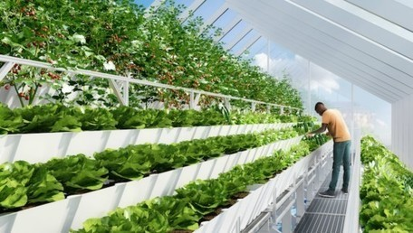 Rooftop aquaponic 'Farmlab' uses tilapia fish to grow edible plants - Inhabitat (blog) | Aquaponics in Action | Scoop.it