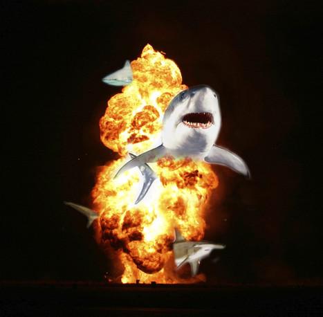Six Ideas For The 'Sharknado' Sequel | Amocean OceanScoops | Scoop.it