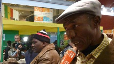 L'agriculture africaine: un marché en or pour les équipementiers français | Questions de développement ... | Scoop.it