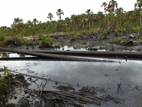 Derrame de 200 barriles de petróleo en río de la selva peruana   MOVUS   Scoop.it