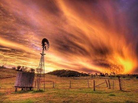 Family farms: the future of farms in Australia | Farm Safety | Scoop.it