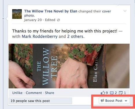 How to Use Facebook | Using Social Media | The Willow Tree Book Blog | lifestyle | Scoop.it