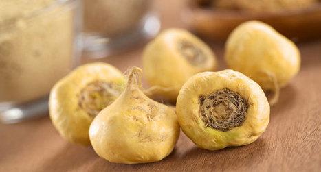 9 plantes et autres aliments à consommer pendant la ménopause | Association Manger Santé Bio | | Naturopathie.therapeutes.fr | Scoop.it