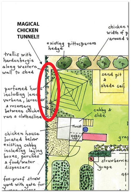 VEG Design Solutions, Part II: The Magical Chicken Tunnel | Think Like a Permaculturist | Scoop.it