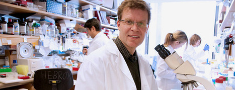 UCSF Scientists Discover Link Between Inflammation and Pancreatic Cancer | ucsf.edu | Pancreatic cancer | Scoop.it