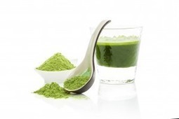 What is Chorella?   Expert nutrition and exercise blog   Scoop.it