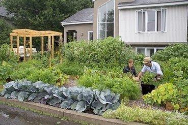 «Mon potager en façade»: un concours d'agriculture urbaine | Claudette Samson | Agro-alimentaire | Agriculture urbaine et rooftop | Scoop.it