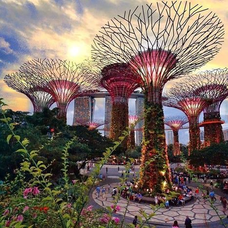 "Alberi fotovoltaici e sensori negli edifici. Così Singapore è il centro di una smart nation | L'impresa ""mobile"" 