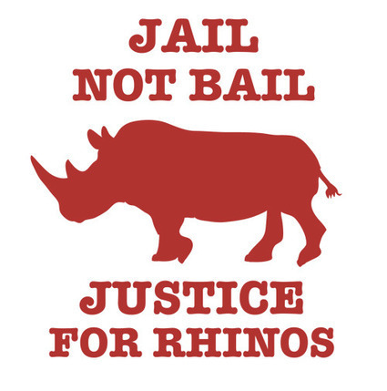 Update: No Bail for KwaZulu-Natal Rhino Horn Syndicate Suspects | What's Happening to Africa's Rhino? | Scoop.it