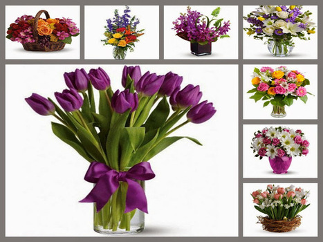 Best Flowers for women Who You Love | Birthday Gift Ideas | Scoop.it
