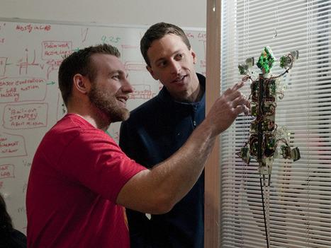 Secrets of the gecko foot help robot climb glass | Amazing Science | Scoop.it