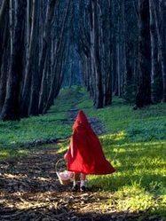 Fairy tales have ancient origin - Telegraph | Ancient Origins of Science | Scoop.it