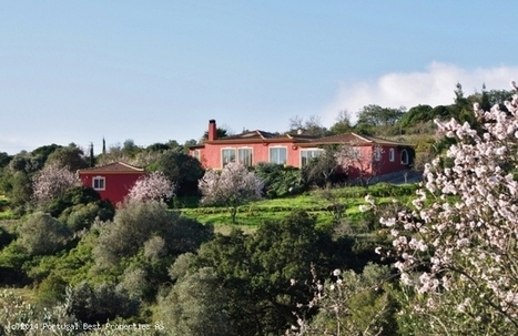 Country House with 2 guest houses and pool in Barão de São João, Lagos | Portugal Best Properties | Scoop.it