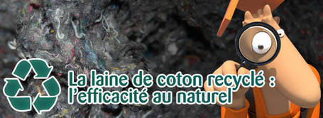La laine de coton : l'efficacité au naturel [MAJ] | IMMOBILIER 2013 | Scoop.it