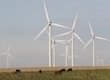 In Texas, Wind Nears 10 Percent of Electricity Generation : Greentech Media | Oil Recovery Technology | Scoop.it