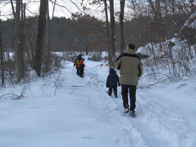 Embrace the Winter - Warm Up with Walk, Safari, and Knitting | About Town in Greater Uphams Corner | Scoop.it