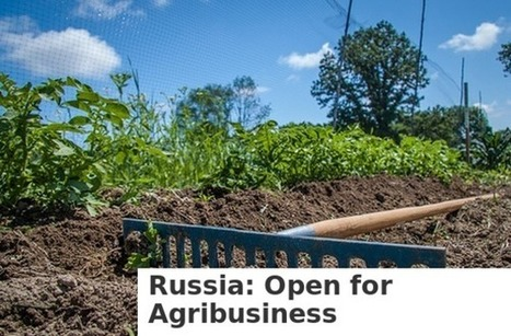 Russia: Open for Agribusiness | TMS Graphics | Scoop.it