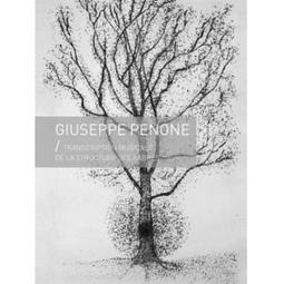 Giuseppe Penone Transcription musicale de la structure des arbres | DESARTSONNANTS - CRÉATION SONORE ET ENVIRONNEMENT - ENVIRONMENTAL SOUND ART - PAYSAGES ET ECOLOGIE SONORE | Scoop.it