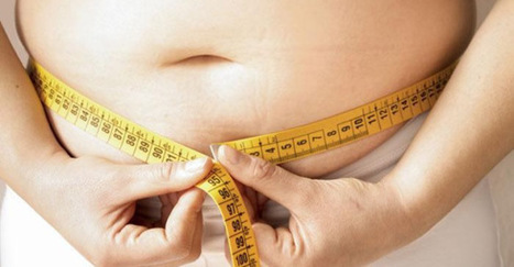 Weight Loss: Belly Fat is Worst Than Overall Obesity - Tampa Bay Review   Weight Loss News   Scoop.it