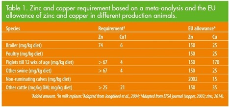 3 ways to reduce zinc and copper in animal feed | Agroalim et dechets organiques | Scoop.it