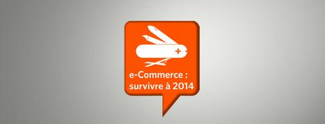 e-Commerce : survivre à 2014 | e-Commerce | Scoop.it