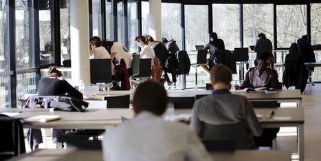 A l'Essec, les nouveaux étudiants côtoient déjà les patrons   Entrepreneurs, entrepreneures   Scoop.it