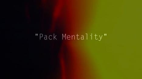 Caliber Truck Co. – Pack Mentality | Skater Life | Scoop.it
