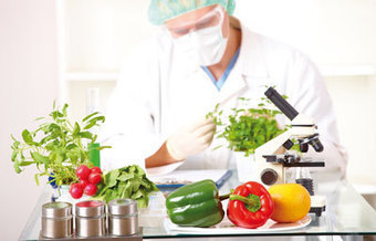 Food science: A smorgasbord of opportunity : Naturejobs | Food science | Scoop.it