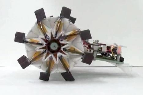 Robots Get Flexible and Torqued Up With Origami Wheels - IEEE Spectrum | STEM | Scoop.it