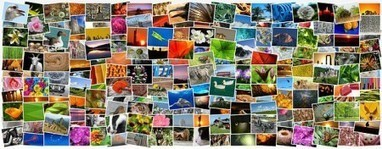 27 techniques de Storytelling pour booster vos écrits | Marketing territorial, The topic | Scoop.it
