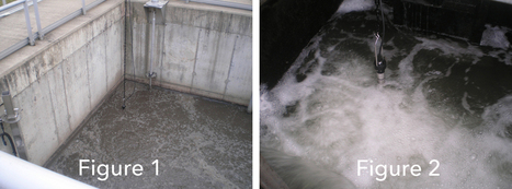 Troubleshooting Nitrification and Denitrification in Wastewater | Wastewater | Scoop.it