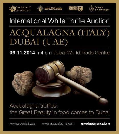 The Speciality Food Festival 2014 - The Acqualagna/Dubai White Truffle Charity Auction | Le Marche another Italy | Scoop.it