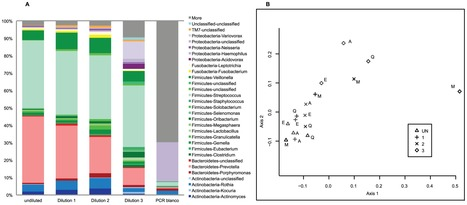 PLoS ONE: Deep Sequencing Analyses of Low Density Microbial Communities: Working at the Boundary of Accurate Microbiota Detection | Microbial World | Scoop.it