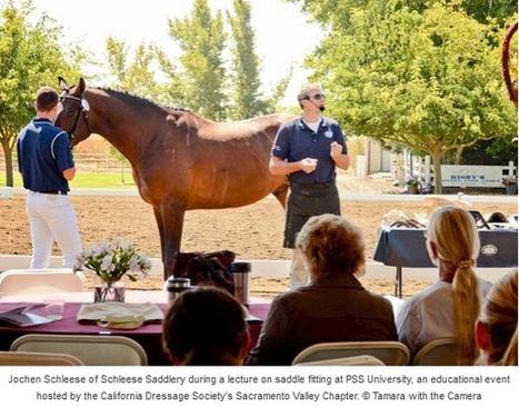 Timeline Photos - Bay Area Equestrian Network | Facebook | USA Equestrian Trust | Scoop.it