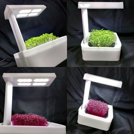 SALE !!!  MicroFarm ONE+ Solo LED countertop Grow Unit, with fullly stocked Farmacy Line of Nutrition Based Crop Medicines | Vertical Farm - Food Factory | Scoop.it