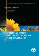 Potential Effects of Climate Change  on Crop Pollination | Plant Breeding and Genomics News | Scoop.it