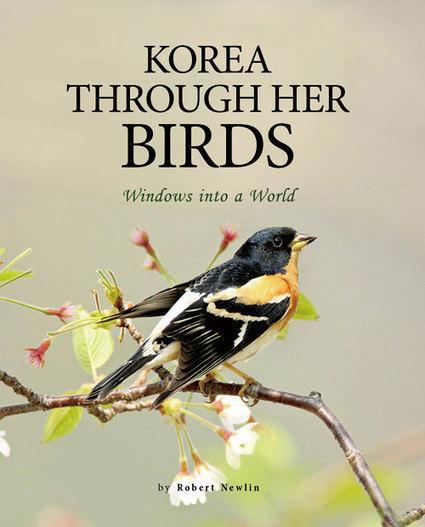 KOREA THROUGH HER BIRDS   SEOUL Magazine   Conservation   Scoop.it