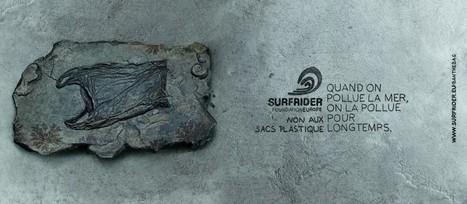 A vos cabas ! Le sac plastique à usage unique interdit dès 2016 en France - Surfrider Foundation Europe | Nature Animals humankind | Scoop.it