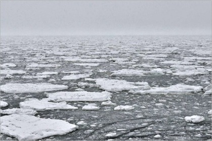 Abnormal Arctic ice season may signal abrupt climate change | Environmental issues | Scoop.it