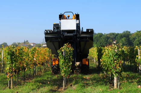 FarmBots, Big Data and the future of agriculture - IT Recruitment Blog | Technology | Scoop.it
