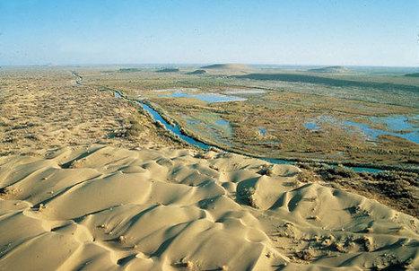 Así se ve el cuarto lago más grande del mundo a punto de extinguirse | Agua | Scoop.it