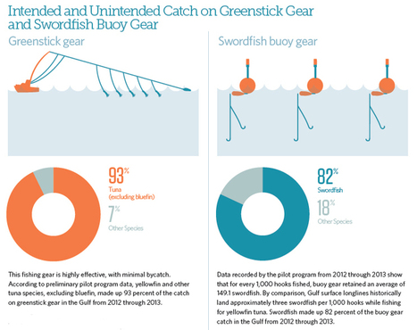 Alternative Fishing Gear to Stop the Waste of Bluefin Tuna - The Pew Charitable Trusts | Sustain Our Earth | Scoop.it