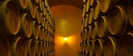 Les Mots du Vin : Pénurie mondiale ou croissance de la production mondiale de vin ? - | Le vin quotidien | Scoop.it