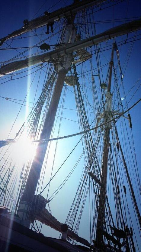 Tweet from @Andrew_Tarr   Tall Ships   Scoop.it